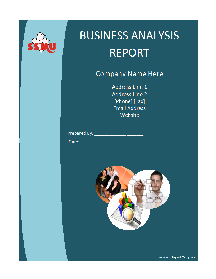 Free Report Templates  Company Financial Analysis Report Sample