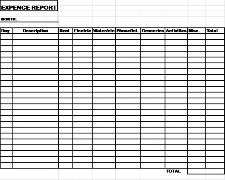 Child Care Expence Report Template  Detailed Expense Report Template