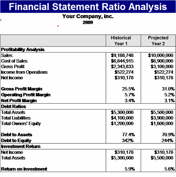 Financial Statement Ratios Template  Financial Reports Templates