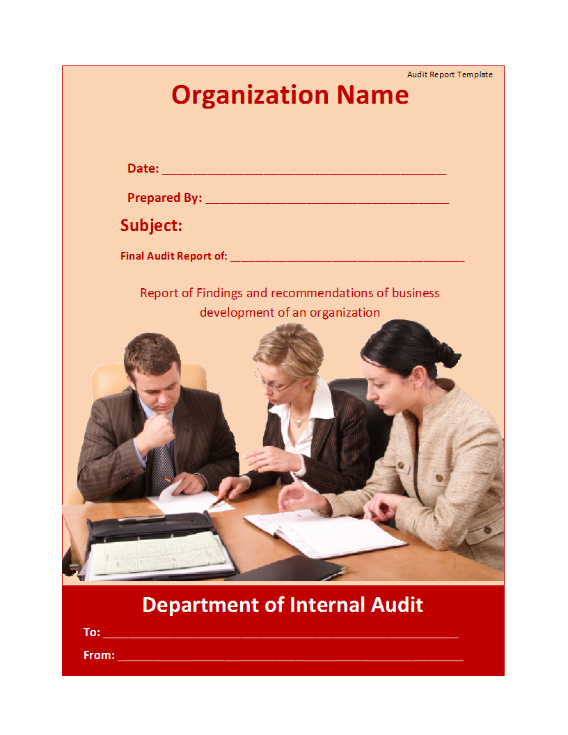 Sample Audit Report Template