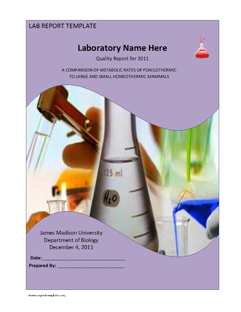 Sample Lab Report Template