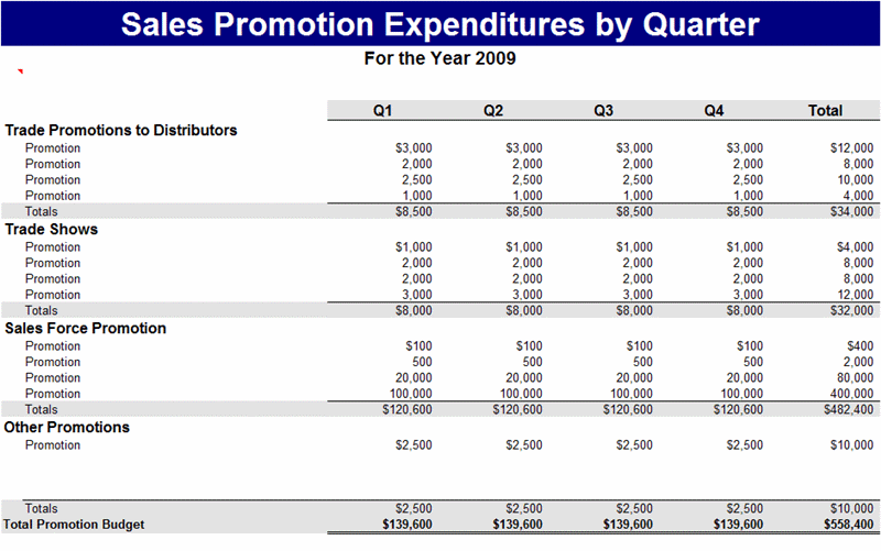 Sample Sales promotion expenses report Template